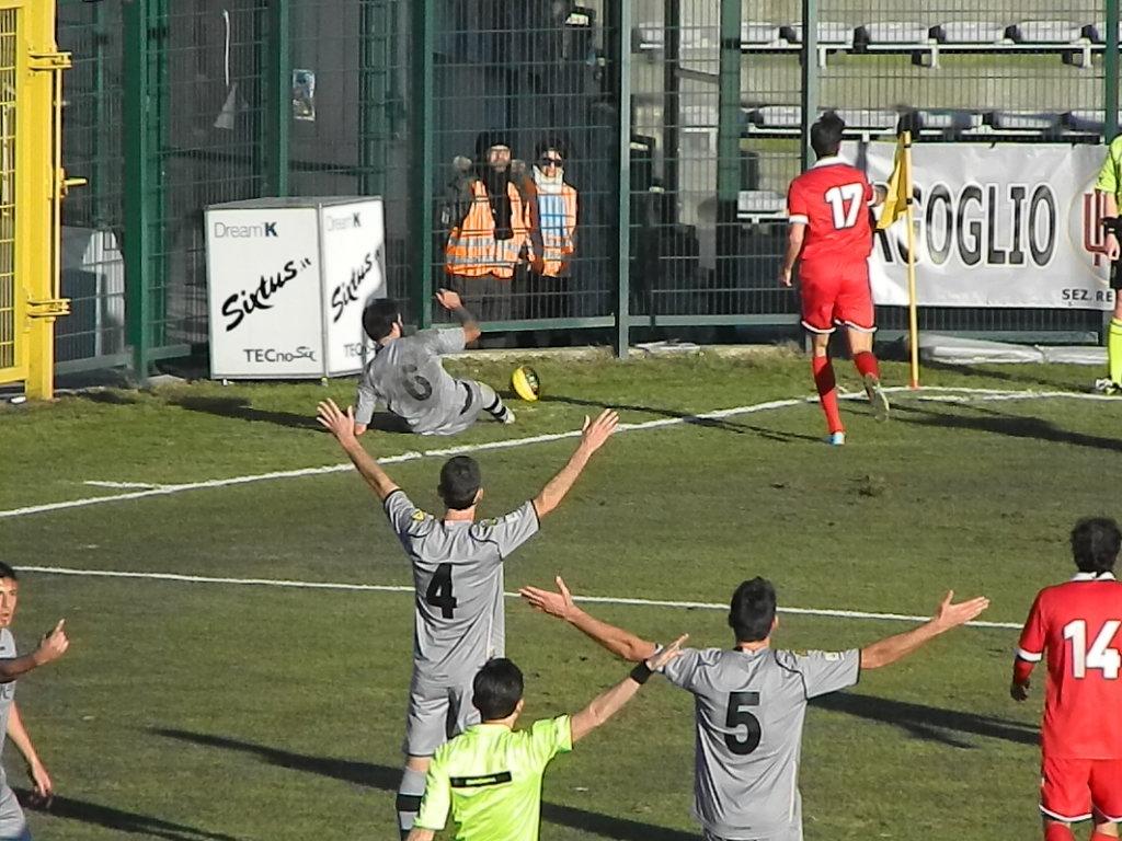 Alessandria-Giana Erminio 01_02_2015 (131)